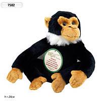 Интерактивное мягкое животное Обезьяна 7582