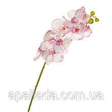"""Квітка """"Орхідея"""" біло-рожева 1 м (силікон)"""