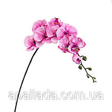 Орхідея рожева 92 см