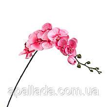 Орхідея ніжно рожева 92 см