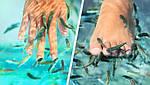 Кангал - лечение кожных заболеваний в Турции  , фото 3