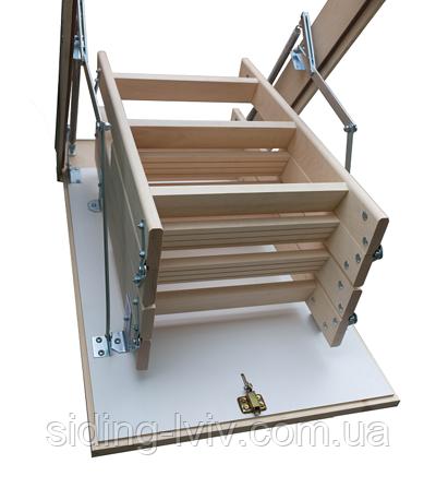 Чердачные лестницы 130*60 Бук Bukwood Compact ST (Буквуд)