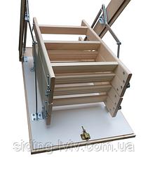 Сходи на горище буквуд Bukwood Compact ST бук 110-60 висота 280 см