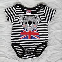 Дитячий боді футболка р 74 бодік на короткий рукав для новонароджених малят