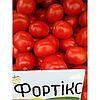 Томат Фортикс F1/Fortix F1 Syngenta 5000 семян