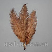 Страусиное перо 55 см коричневый