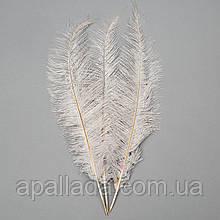 Страусиное перо 55 см светло-серый