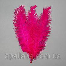 Страусиное перо 55 см ярко-фиолетовый