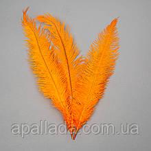 Страусиное перо 55 см Оранжевый