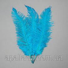 Страусиное перо 55 см голубой