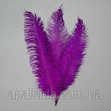 Страусиное перо 55 см фиолетовый