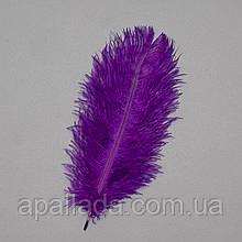 Страусиное перо 25-30 см фиолетовый