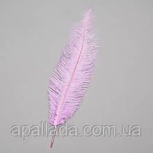 Страусиное перо 25-30 см светло-фиолетовый