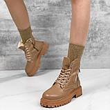 Зимові черевички =VIOLA= 11324, фото 6