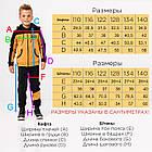 Тёплый спортивный костюм с начесом для мальчика р. от 110 до 140 SKL90-322801, фото 2