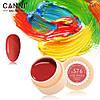Гель- краска Сanni 576