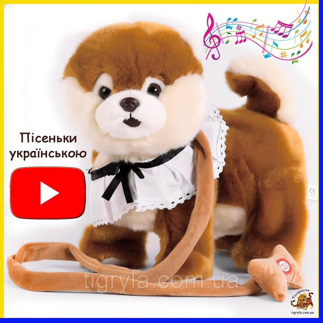 Интерактивная собака на украинском языке Шпиц