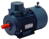 Электродвигатель АИР71В6Е  (0,55кВт 1000 об/мин)
