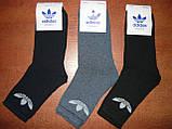 """Підліткові махрові шкарпетки """"в стилі"""" """"Adidas"""". р. 36-41. Туреччина, фото 6"""