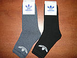 """Підліткові махрові шкарпетки """"в стилі"""" """"Adidas"""". р. 36-41. Туреччина, фото 5"""