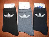 """Підліткові махрові шкарпетки """"в стилі"""" """"Adidas"""". р. 36-41. Туреччина, фото 4"""