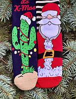Новорічні шкарпетки теплі високі з кактусом і дідом морозом М1 (2 пари в упаковці, розмір 36-45)
