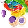 Гель- краска Сanni 594