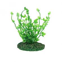 Штучна рослина Aqua Nova NP-10 08013, 10см (NP-1008013)