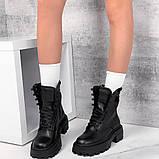 Демисезонные ботиночки =Dino_Ri= 11331, фото 4
