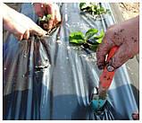 Комплект для выращивания клубники П-23 белое+П-50 черное (3,2*10), фото 2