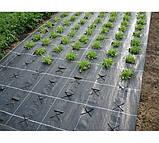 Комплект для выращивания клубники П-23 белое+П-50 черное (3,2*10), фото 4