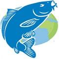 """""""FISHLAND"""" - интернет магазин товаров для рыбалки"""
