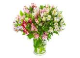 Багаторічні квіти