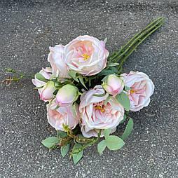 Пионовидная роза Остина с бутонами кустовая 47см