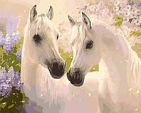 """KHO 2433 """"Пара коней"""" Роспись по номерам на холсте (без коробки) 40х50см"""