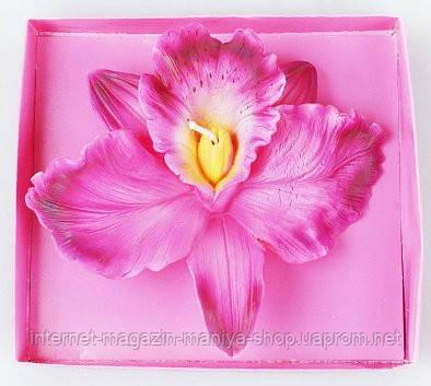 Свеча Орхидея