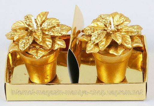 Набор новогодних свечей 2шт в керам. горшочках Рождественник