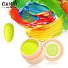 Гель- краска Сanni 602
