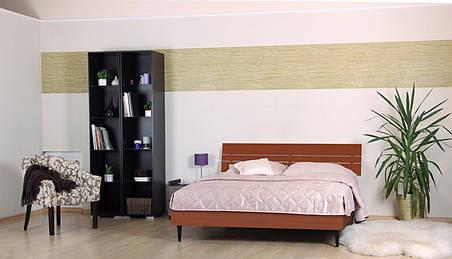 Кровать (ДСП) Прагматик яблоня (Comfoson ТМ), фото 2