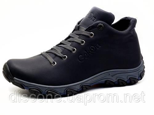 Ботинки мужские кожаные зимние Gekon 4794 Casual 20GVM кожанные черно-серые