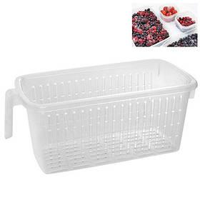 Контейнер пищевой для заморозки ягод, овощей и фруктов Stenson N01539 36x15x13 см