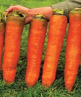 """Морковь """"Красный гигант""""(семена)пакет-фермер"""
