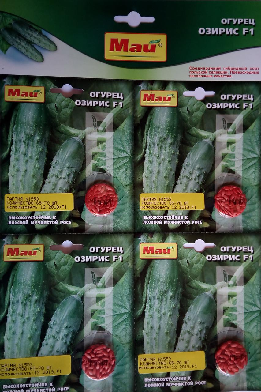 Семена  огурца сорт Озирис F1 70 шт