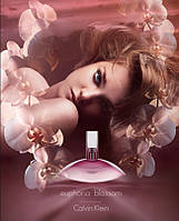 Женская туалетная вода Calvin Klein Euphoria Blossom, купить, цена, отзывы, интернет-магазин