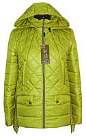 Демисезонная куртка на молнии р 42-46, фото 1