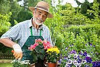 Садовник. Хозяйственник