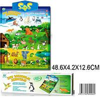 Плакат обучающий Эти забавные животные DO999B