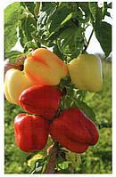Семена перца сладкого TS 09-0214  5 гр, Solare Sementi