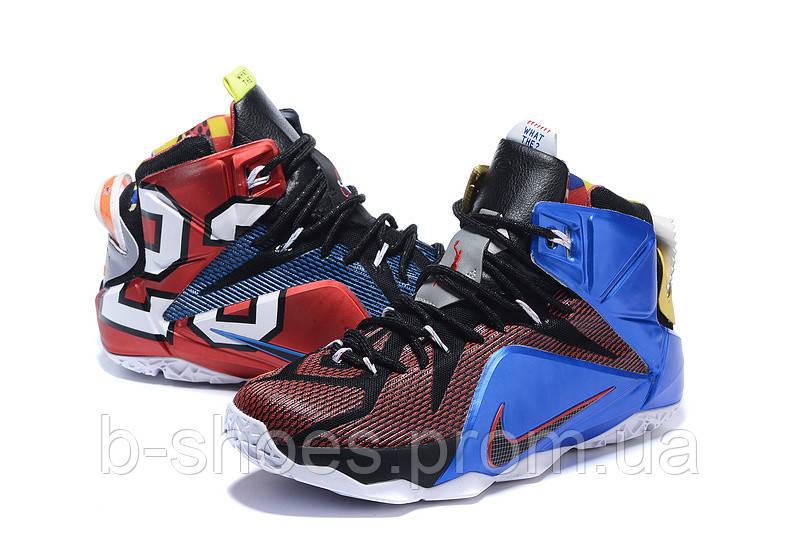 Мужские баскетбольные кроссовки Nike Lebron 12 (Multicolor)