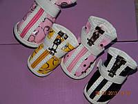 Стильная и качественная обувь для собачек и кошечек 4р.